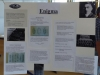 gymnasium-herxheim-science-fair-2015-21