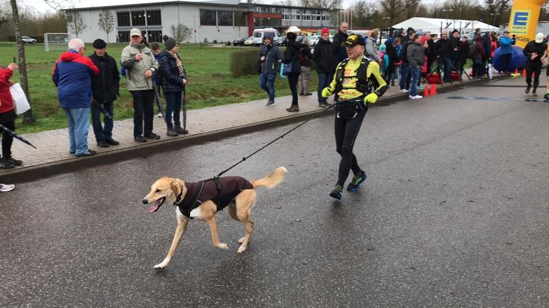 Bienwald-Marathon Kandel 2019 - 4