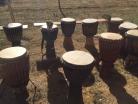 Fest für Afrika Straußenfarm Mhou Rülzheim - 10