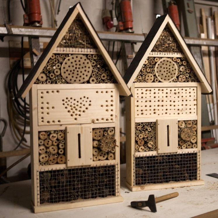 Bau eines Wildbienenhotels in Büchelberg - Pfalz-Express