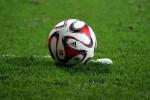 Fußball auf einem Rasen