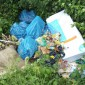 Plastiksäcke und Farbeimer in der Natur