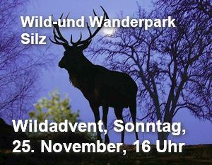 wildpark silz wildadvent