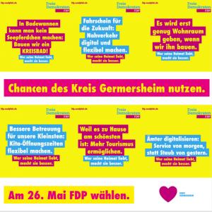 FDP Südpfalz