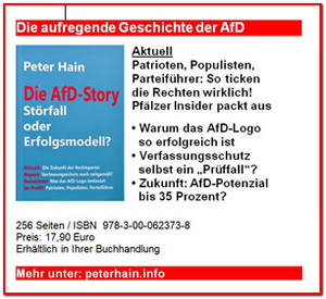 Peter Hain-AfD